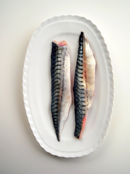 mackerel filet